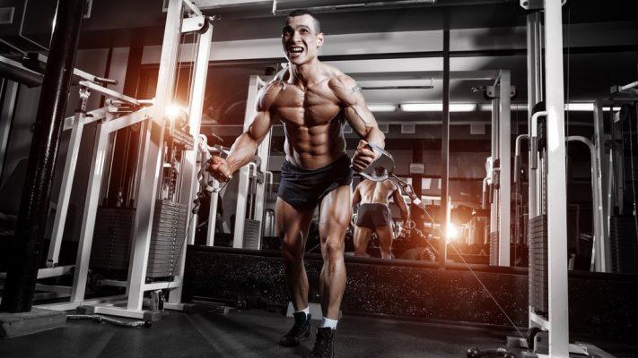 dumbbell for biceps