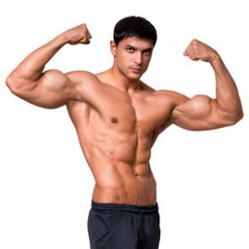 **GENERAL STEROID CYCLES
