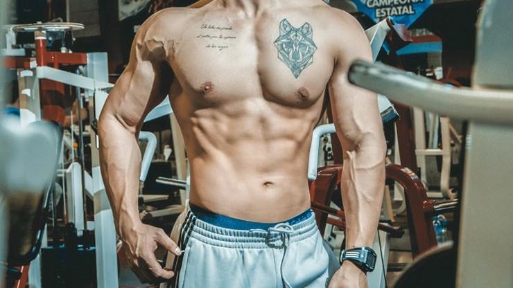 andriol bodybuilding